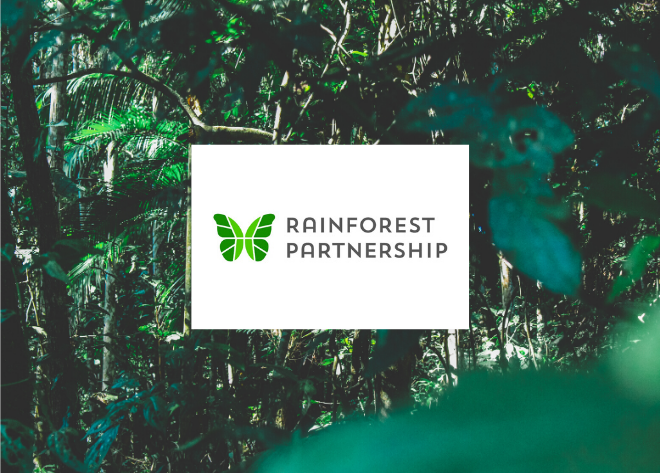 donate with cryptocurrency-rainforest day