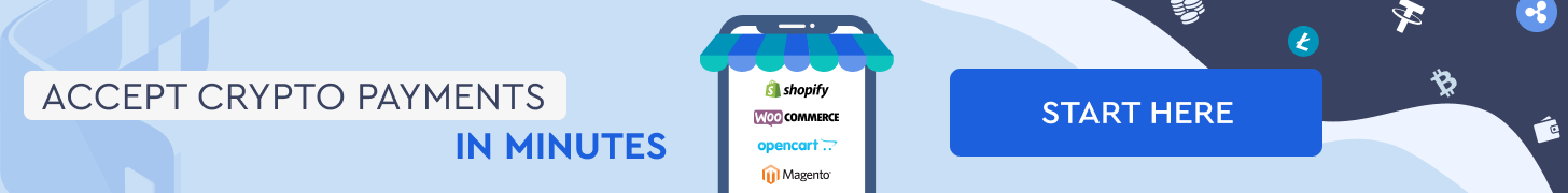 Cryptocurrency payment solutions-Ecommerce Intergration Guide